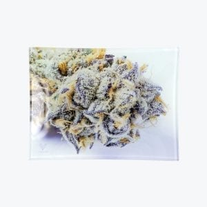 Girl_Scout_Cookies_-_Straight_-_Small_2000x