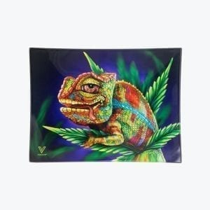 Stoned_Chameleon_-_Straight_-_Small_2000x